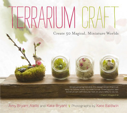 Terrarium Craft: Timber Tuesdays (1)