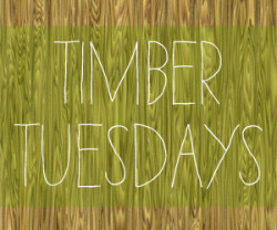 The Handbook of Natural Plant Dyes: Timber Tuesdays (2)