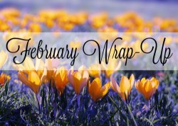 Feburary Wrap-Up